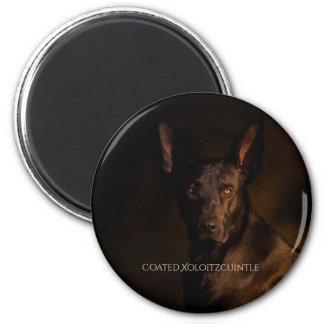Xoloitzcuintle beschichtete Magneten Runder Magnet 5,7 Cm