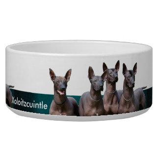 Xoloitzcuintle Keramik-Haustier-Schüssel Napf