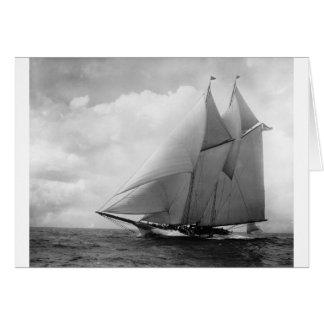 Yacht Amerika c1910 Karte