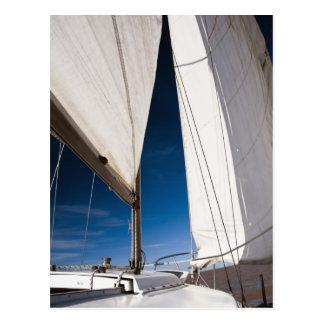 Yachtsegel und -himmel postkarte