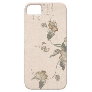 Yamabuki Blumen (kerria japonica) iPhone 5 Hülle