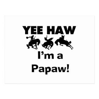 Yee Haw bin ich eine Papaya-Frucht T - Shirts und Postkarte
