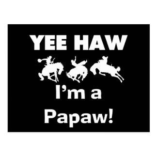 Yee Haw bin ich eine Papaya-Frucht T-Shirts und Postkarte