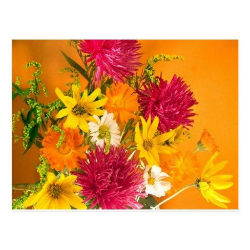 yellow_carnations.jpeg postkarten