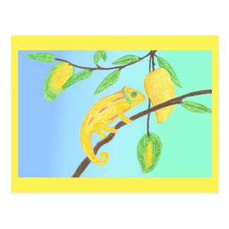 Yellow Chameleon in a Mango Tree Postkarte