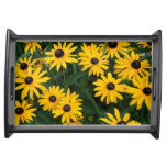 Yellow sunflower tablett