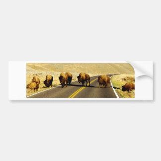 Yellowstone-Büffel-Gang Autoaufkleber