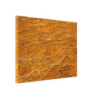 Yellowstone Nationalpark abstrakte Kräuselungen Leinwanddruck