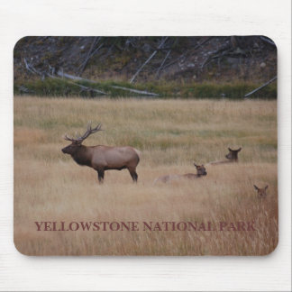 YELLOWSTONE NATIONALPARK MOUSEPAD