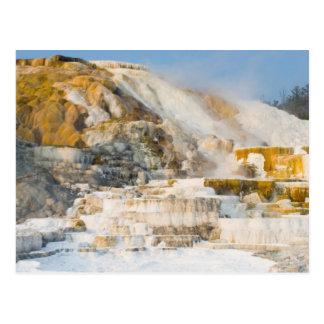 Yellowstone Nationalpark Postkarte