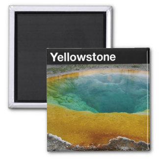 Yellowstone Nationalpark Quadratischer Magnet