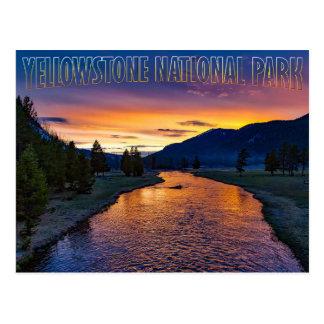 Yellowstone Nationalpark Wyoming am Postkarte