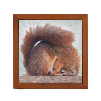 Yoga-Eichhörnchen-Schreibtisch-Organisator Stifthalter