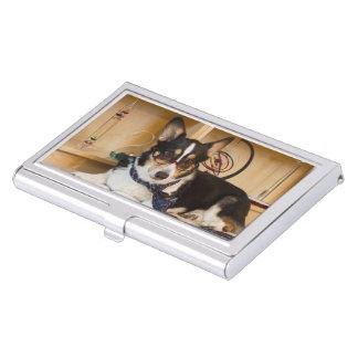 Yogi der Wissenschafts-Hund Visitenkarten Dose