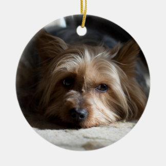 yorkhire/seidiges Terrier-Verzierungen Keramik Ornament