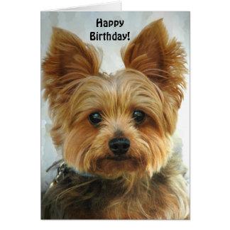 Yorkie - alles Gute zum Geburtstag Grußkarte