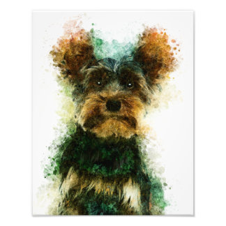 Yorkie/Haustier-Porträt Yorkshires Terrier Fotodruck