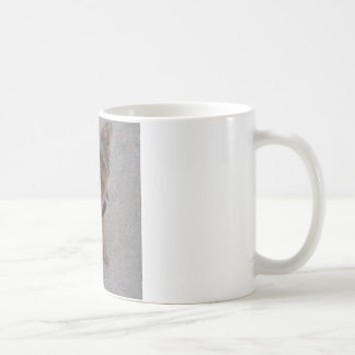Yorkie Kaffeetasse