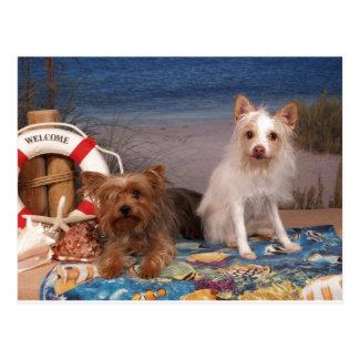 Yorkie und Freund-Strand-Zeit Postkarte