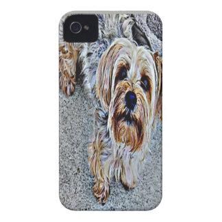 Yorkie Yorkshire Terrier gefärbt Case-Mate iPhone 4 Hülle
