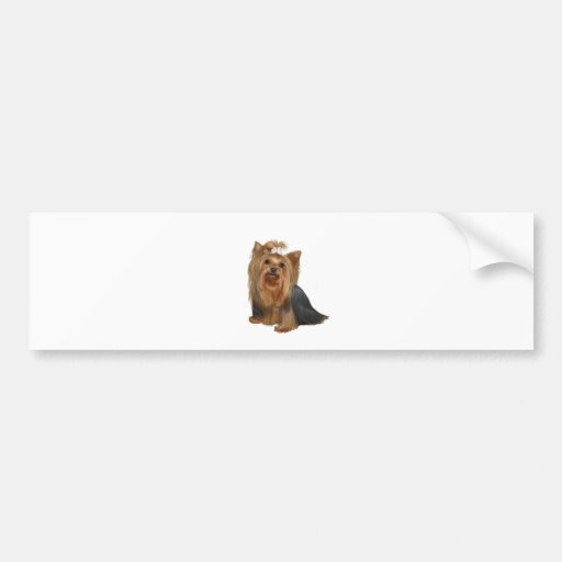 Yorkshire Terrier (7) Auto Aufkleber