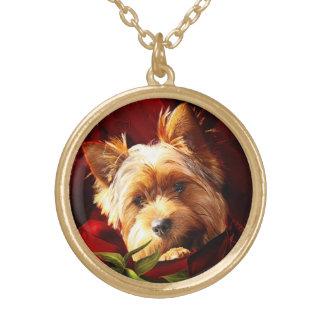 Yorkshire-Terrier eingebettet in den Roten Rosen Vergoldete Kette