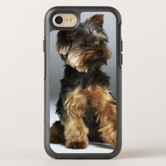 Yorkshire-Terrier, Nahaufnahme OtterBox Symmetry iPhone 8/7 Hülle