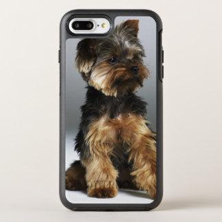 Yorkshire-Terrier, Nahaufnahme OtterBox Symmetry iPhone 8 Plus/7 Plus Hülle