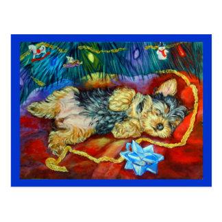 Yorkshire Terrier Postkarte