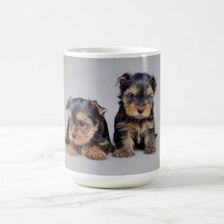 Yorkshire-Terrierwelpen Kaffeetasse