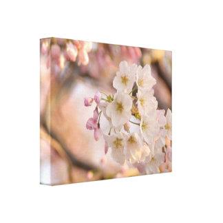 Yoshino Kirschblüten-Fotografie-Druck Leinwanddruck