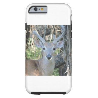Young Buck-Telefon-Kasten Tough iPhone 6 Hülle