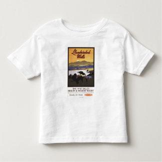 Ypsilon-Tal-Erholungsort-British Rail-Plakat Tshirts