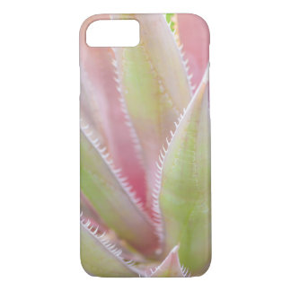 Yucca-Pflanzennahaufnahme iPhone 8/7 Hülle