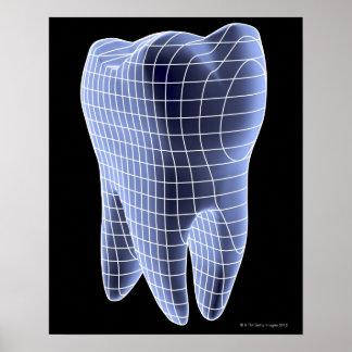Zahn, Computergrafik eines molaren Zahnes Poster