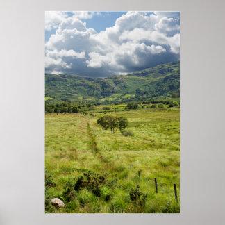 Zaun, der zu Bäume und felsige Berge führt Poster