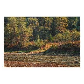 Zaun nahe dem Fluss Holzdruck