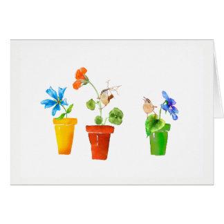 Zaunkönige und Flowerpots Karte