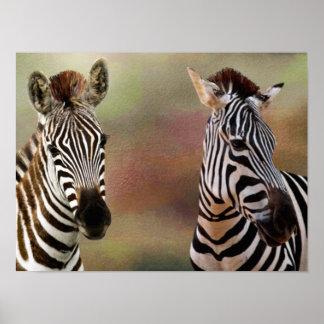 Zazzling Zebra-Druck Poster