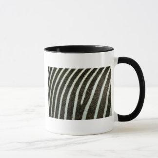 Zebra 2 tasse