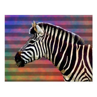 Zebra auf psychedelischen Streifen Postkarte