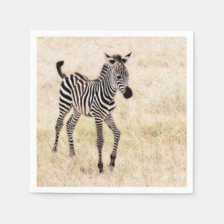 Zebra-Colt Papierserviette