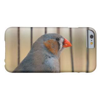 Zebra-Fink-Vogel im Käfig Barely There iPhone 6 Hülle