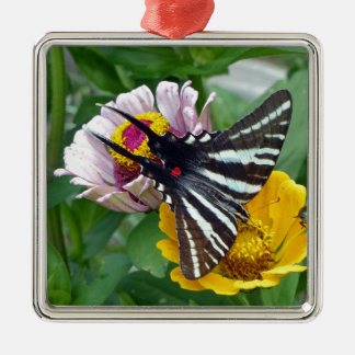 Zebra-Frack+Japanischer Käfer Quadratisches Silberfarbenes Ornament