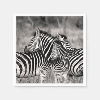 Zebra-Herden-Natur-Safari-Schwarzweiss-Streifen Papierserviette