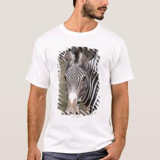 Zebra, Kenia, Afrika T-Shirt