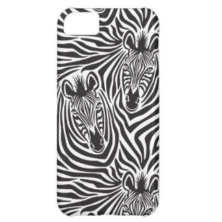 Zebra-Paare iPhone 5C Hülle