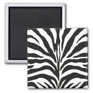 Zebra Quadratischer Magnet