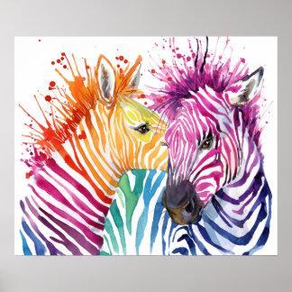 Zebra-Regenbogen-Plakat Poster