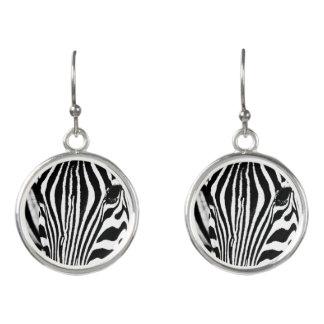 Zebraporträt Schwarzweiss Ohrringe